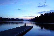 MacRitchie Reservoir Twilight (Singapore)