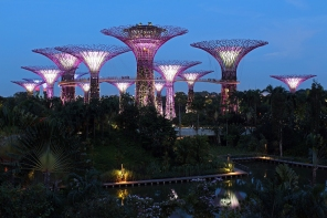 Supertrees at Gardens by the Bay (Singapore)