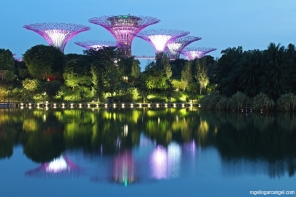 Supertrees @ Gardens By The Bay (Singapore)